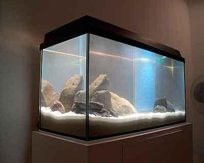 mein aquarium und technik. Black Bedroom Furniture Sets. Home Design Ideas